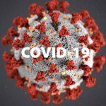Picture of Coronavirus under microscope